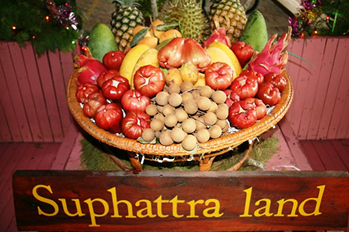 Suphattra Land Fruit Farm