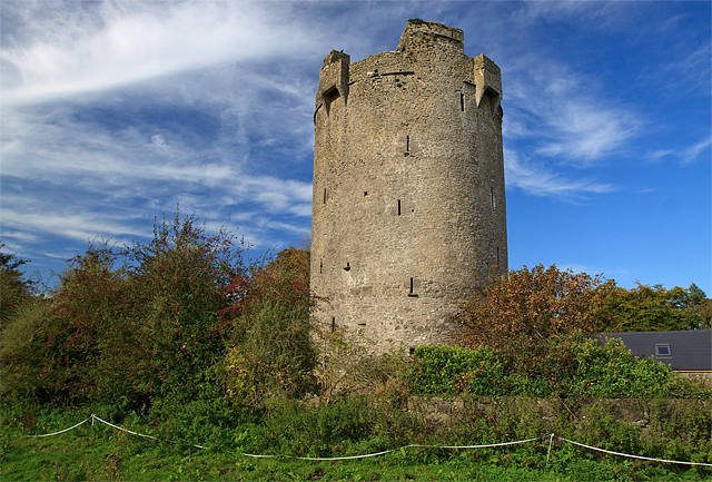 Castles_of_Munster,_Ballynahow,_Tipperary_-_geograph_org_uk_-_1542667