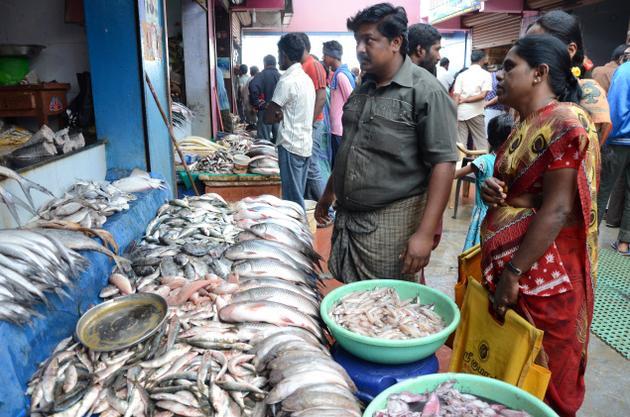 Verti d mesio indijos turg s turizmobaze lt for Fish market cincinnati